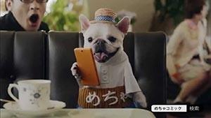 【めちゃコミックCMの腹巻犬】飼い犬かCGかなど正体を徹底議論!