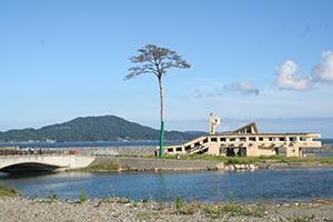 【東日本大震災】避難しない家族が復興の現状を伝えるアンテナとなった!